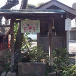 本郷氷川神社 手水舎