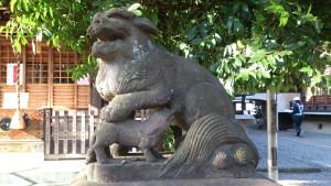 本郷氷川神社 狛犬 授乳