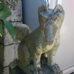 白玉稲荷神社 神狐 左