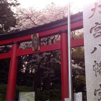 大宮八幡桜まつり