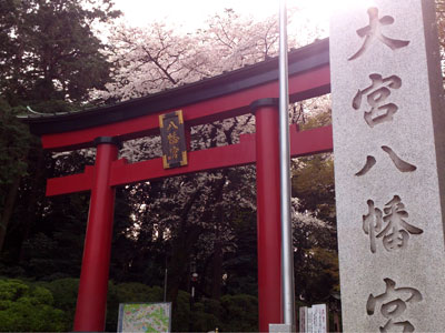 大宮八幡桜まつり001