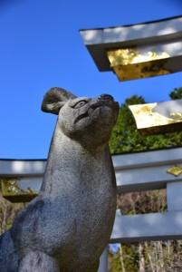 三峯神社狼