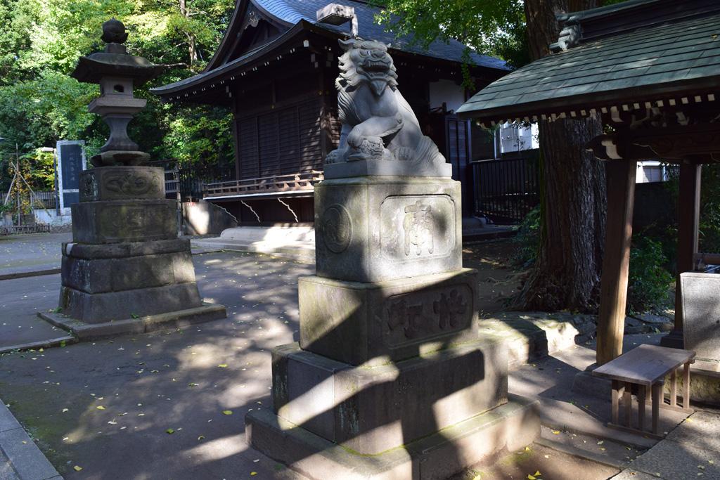 東中野氷川神社 拝殿前 狛犬右