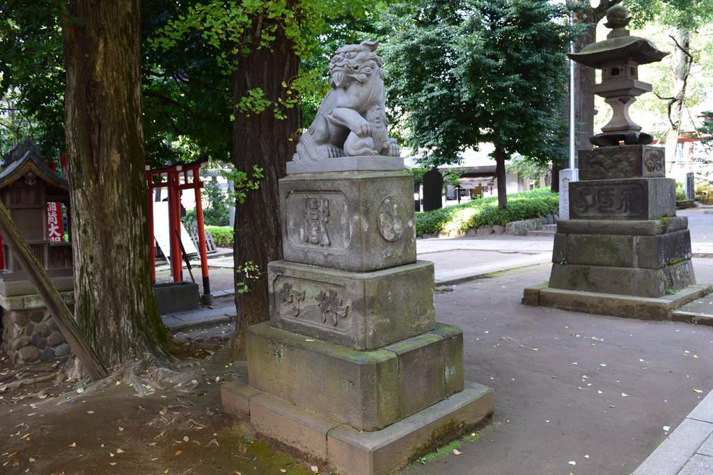 東中野氷川神社 拝殿前 狛犬左