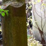 東中野氷川神社 鳥居残欠