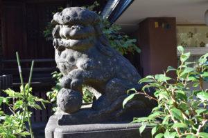 新井北野神社 拝殿前 狛犬右