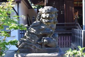 新井北野神社 拝殿前 狛犬左