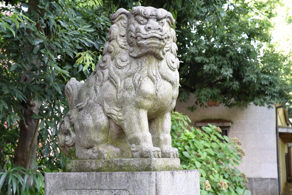 新井北野神社 狛犬左
