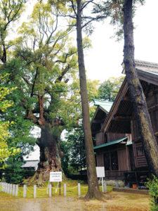 川津来宮神社1