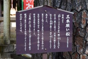 沼袋氷川神社_三本願い松_立て札